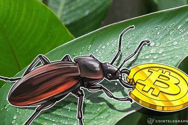 Bitcoin Unlimitedのバグに対するコミュニティの反応―SegWitの導入を求める声広がる
