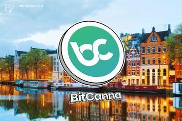 A Dutch Blockchain Startup Is Launching a Revolutionary Cannabis Platform