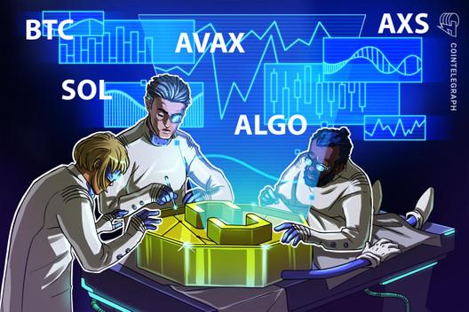 本週最值得關注的 5 種加密貨幣:BTC、SOL、AVAX、ALGO、AXS