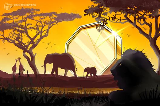 Zimbabwe Returns to Crypto as Reserve Bank Proposes Regulatory Sandbox
