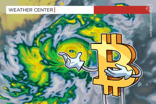 OMG the Volatility! LINK Crashes as $12K Evades Bitcoin: Weekly Recap