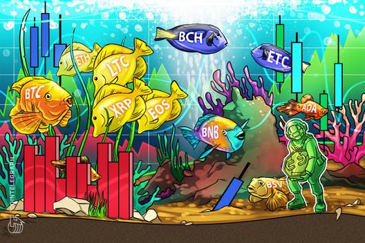 Price Analysis Jan 29: BTC, ETH, XRP, BCH, BSV, LTC, EOS, BNB, ETC, ADA