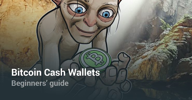 Bitcoin Cash Wallets Ein Anfanger Guide -