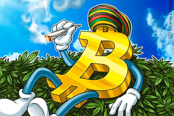 Bitcoin Blockchain Attracts Weed Growers; Register Strain Origins