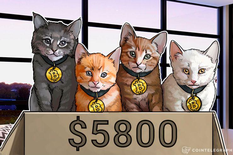 El precio de Bitcoin de $ 6 mil casi se vuelve realidad, mientras que las bifurcaciones se mantienen