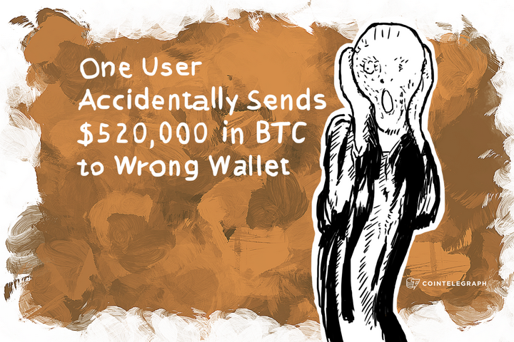One User Accidentally Sends $520,000 in BTC to Wrong Wallet