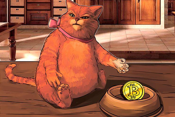 Por que investidores tradicionais tendem a pensar que o Bitcoin é uma bolha