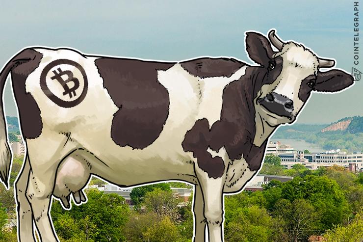 Cooperativa Pecuária do Arkansas planeja usar a Tecnologia Blockchain no Monitoramento de Produtos à Base de Carne