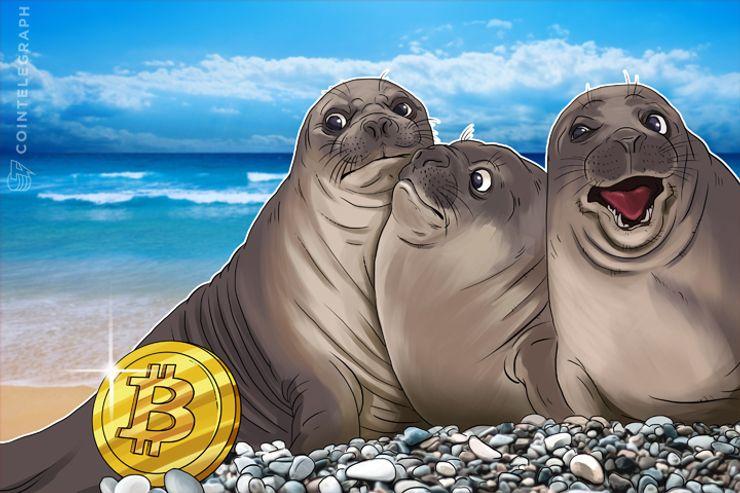 Governos Corruptos Tendem a Declarar o Bitcoin Ilegal: Análise