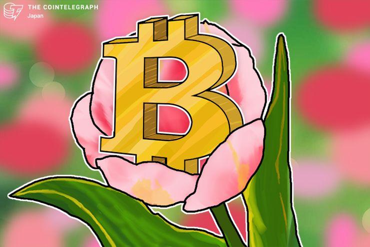 ゴールドマンサックス「ビットコインはバブル水準 歴史上の投機バブルをはるかに凌駕」