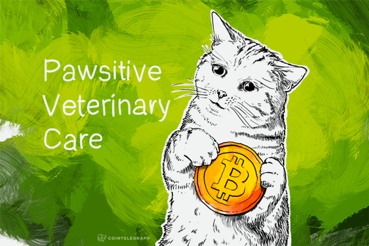 Pawsitive About Bitcoin