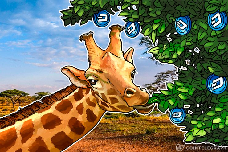 Dash's Baby Giraffe: Govts Could Target Businesses That Seek to Integrate Anonymous Currencies