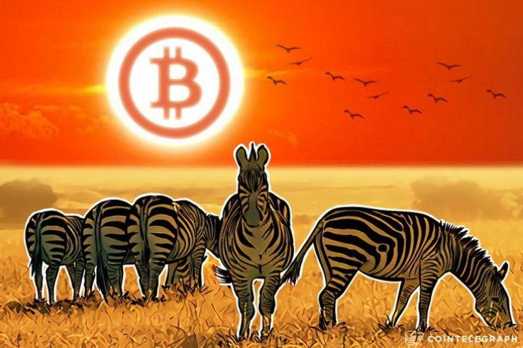 Južna Afrika – desetine hiljada trgovaca prihvata bitkoin uplate