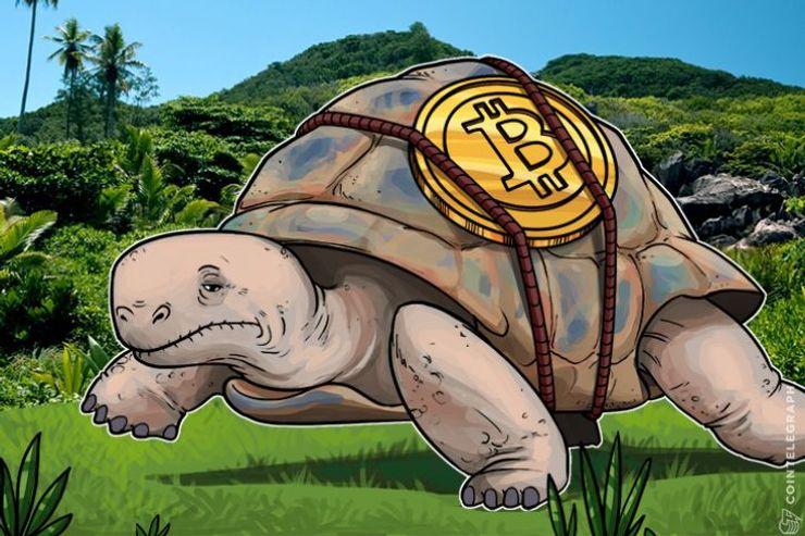 """""""なぜ、ぼくのビットコイン取引はこんなに時間がかかるの?""""―その理由を解説"""