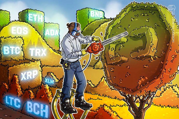 Bitcoin, Ethereum, Ripple, EOS, Litecoin, Bitcoin Cash, Stellar, Tron, Binance Coin, Cardano: Analisi dei prezzi, 25 febbraio