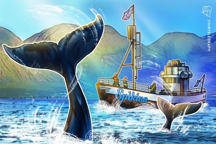 'The Power of 1,000 Whales in Your Wallet' — Crypto Platform's Promise to Newbie Traders