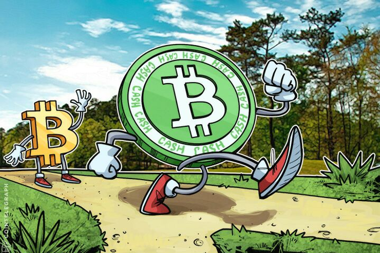 Bitcoin and Bitcoin Cash on a path