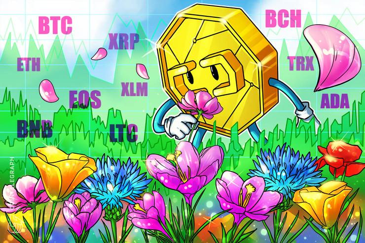 Bitcoin, Ethereum, Ripple, Bitcoin Cash, Litecoin, EOS, Binance Coin, Stellar, Cardano, TRON: Analisi dei prezzi, 15 aprile