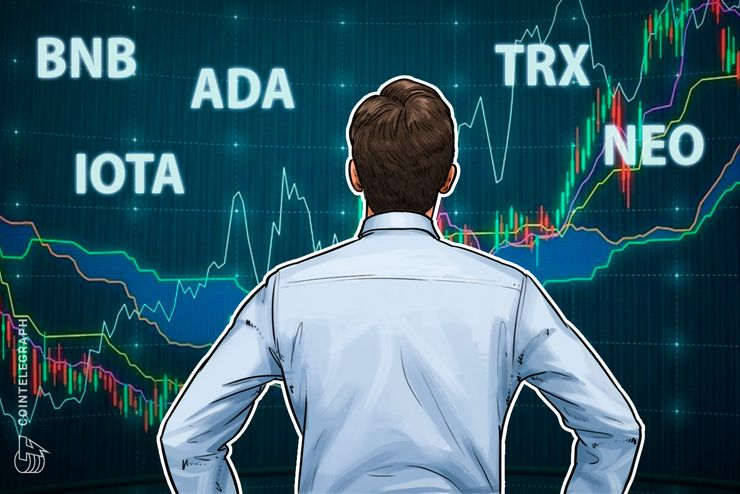Top 5 Crypto Performers Overview: Binance Coin, Cardano, IOTA, Neo, Tron thumbnail