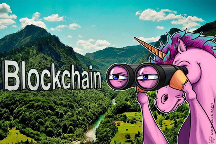 """Unicorns"" and Investors Are Gearing Towards Blockchain"