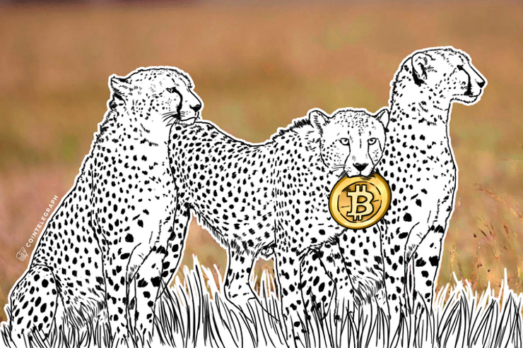 'Cheetahs': Africa's Young Minds Embrace Bitcoin (Op-Ed)