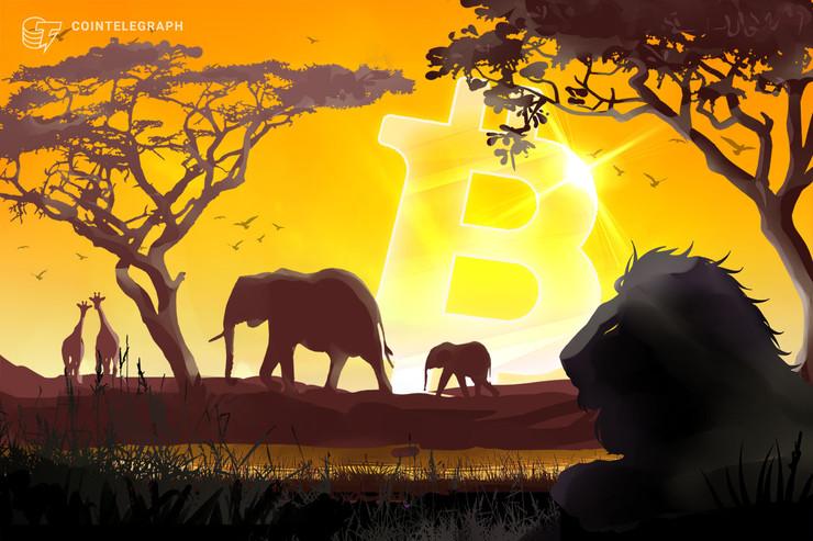 El interés en las búsquedas de Bitcoin es mayor en África y América del Sur