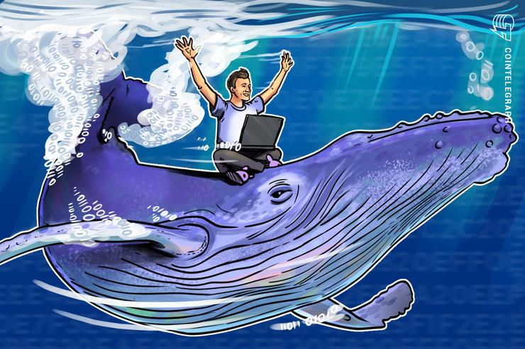 Una ballena mueve 20 veces más de 55 mil Bitcoins de forma sincronizada en tan sólo ocho minutos