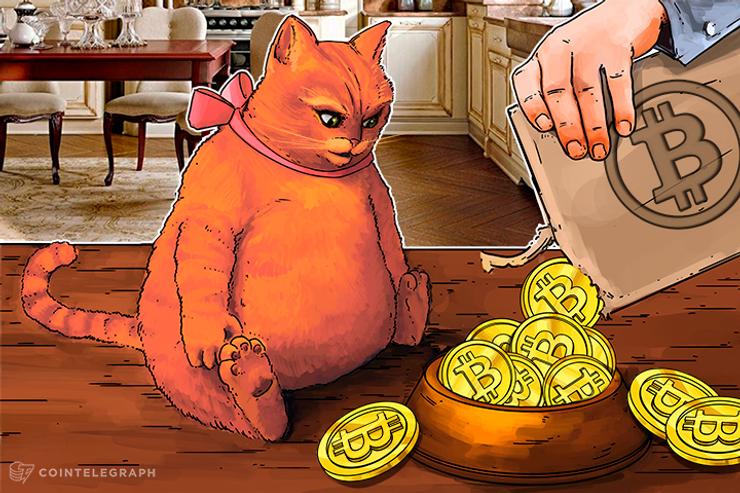 'Hodl' Everything or Take Profits on Crypto Gains?