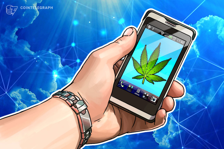 Blockchain oferece soluções para indústria da maconha