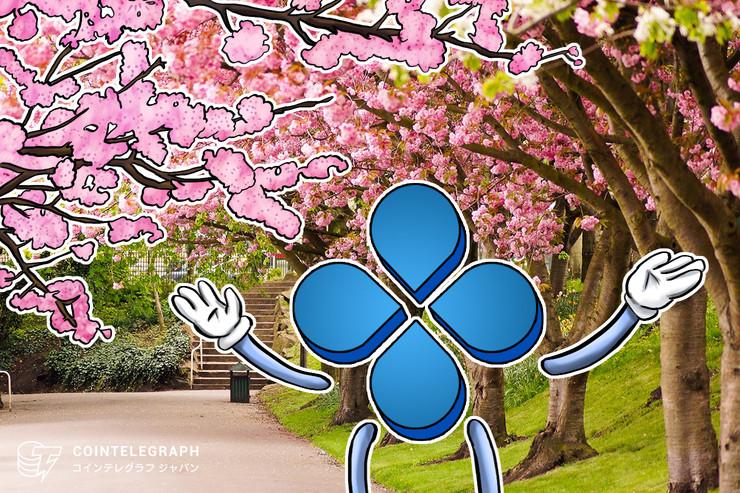 桜咲く仮想通貨取引所! CROSS exchangeの自動取引マイニングで毎日配当をゲットしよう[PR]