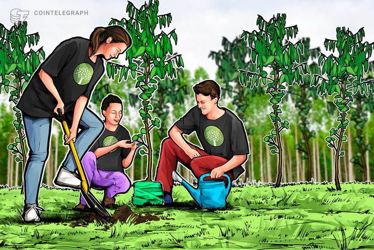 How One Project Is Going to Save Trees In Paraguay Via Blockchain