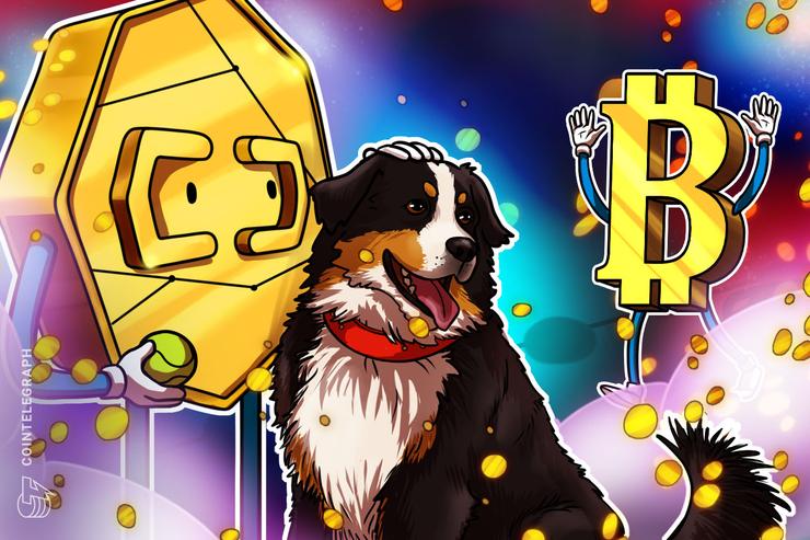 Bitcoin Rewards App Lolli Partners With Major US Pet Store Chain Petco