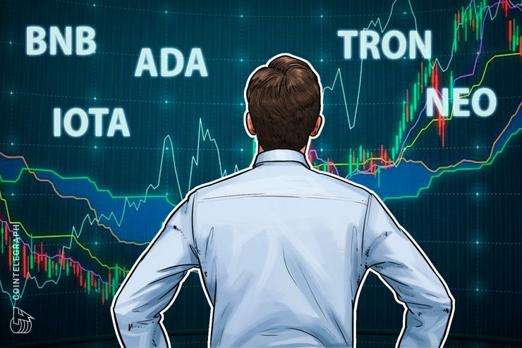 Top 5 Crypto Performers Overview: Binance Coin, Cardano, IOTA, Neo, Tron