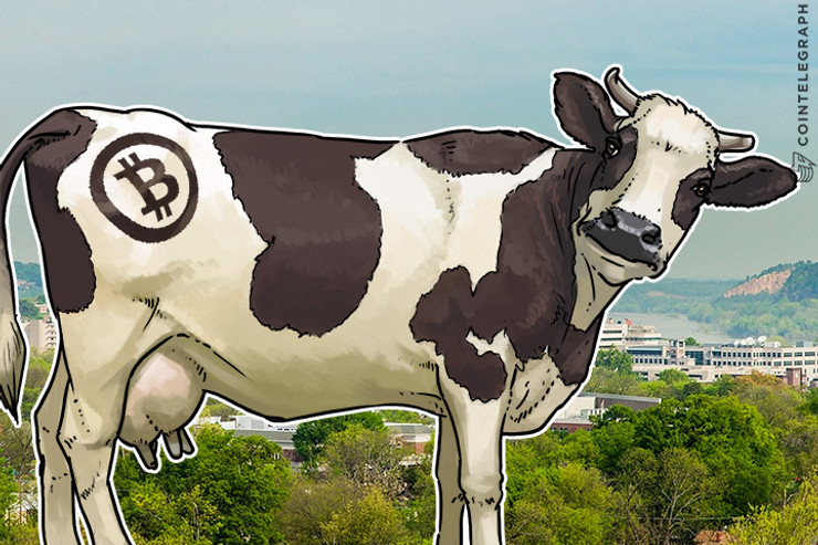 Arkansas Livestock Cooperative Planning Use Blockchain Technology in Meat Products Monitoring