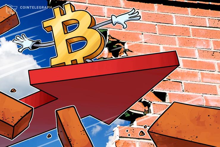 Bitcoin Erases February's Gains, BTC Price Sinks Below $8,700