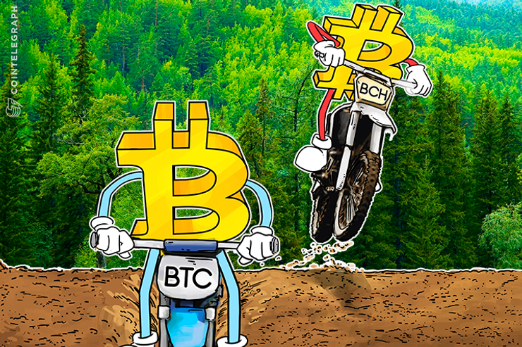 Crypto-Mania in Full Swing: Daily Highs and Lows