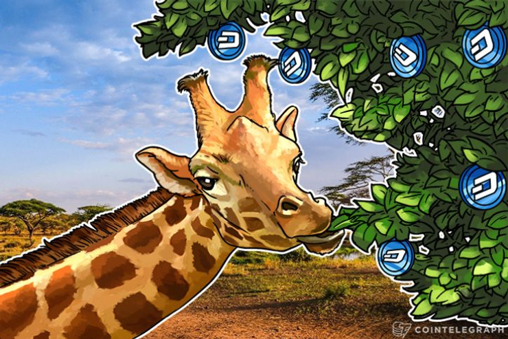 Dash Reaches Dizzying Highs As Enthusiasm for Number 3 Crypto Grows
