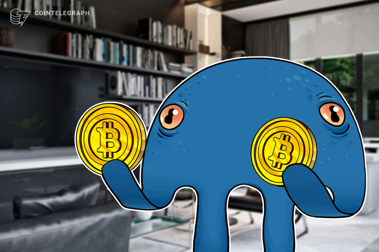 Kraken Paid 250 Salaries to Staff in Bitcoin Last Month