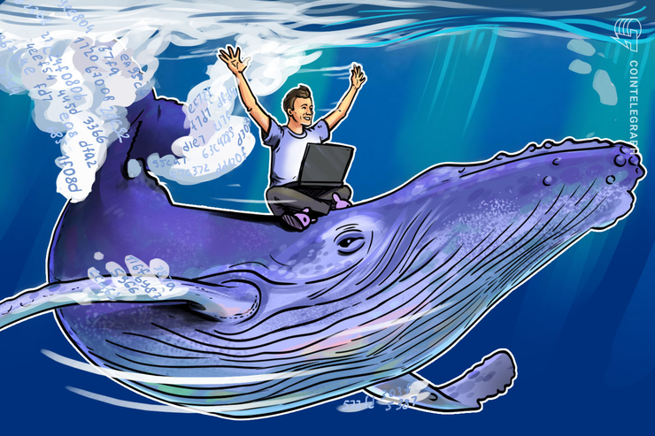 Study Reveals: Bitcoin $20,000 Bull-Run Caused By One Whale