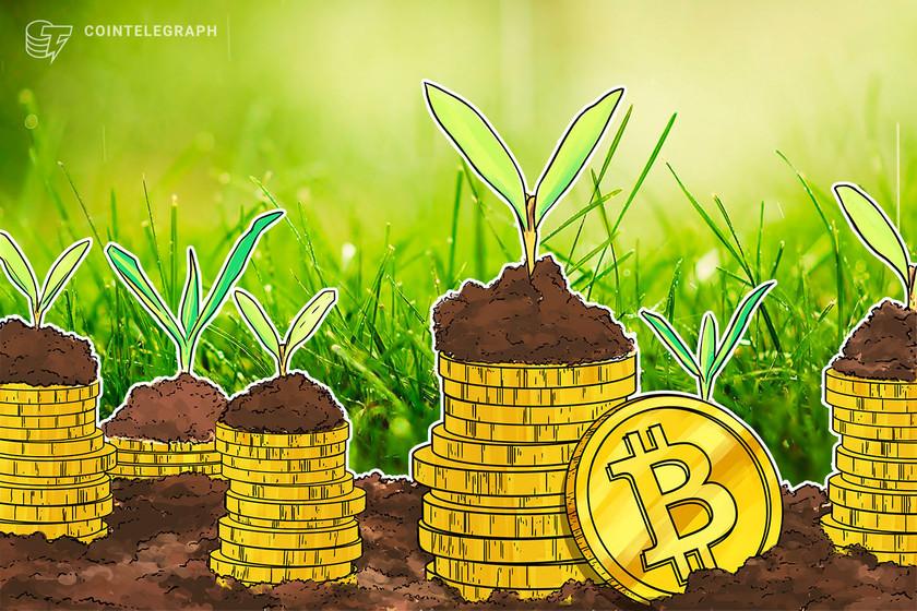 'I got Bitcoin!' — trick-or-treaters rewarded with crypto