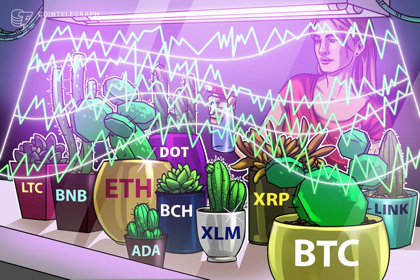 Price analysis 12/7: BTC, ETH, XRP, LTC, BCH, LINK, DOT, ADA, BNB, XLM