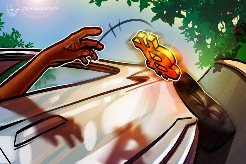 For the long haul? When Bitcoin nosedived, institutions held fast